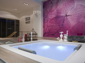 bain hydromassage. Black Bedroom Furniture Sets. Home Design Ideas